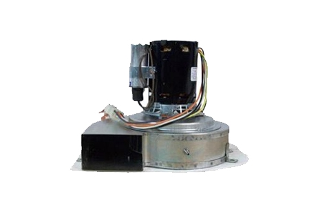 Pentair Minimax Nt Blower With Gasket 250std 300std